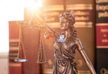 lawyers law firms egypt cairo